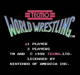 Tecmo World Wresting